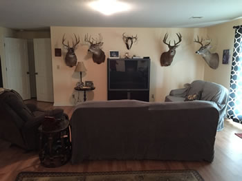 Lodge picture, white tail deer, turkey and upland game birds
